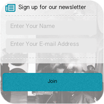 Mailing List and Email Marketing Feature